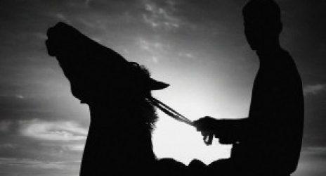 boy-on-horse